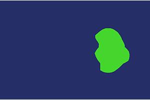 Pax8 Logo